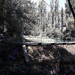 Lazar's Canyon照片