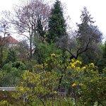 Jardin botanique de Prague