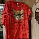 Φωτογραφία: Smoky Mountain Cat House
