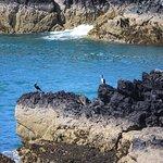 Photo de Newborough Beach