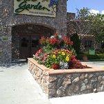 Bild från Olive Garden