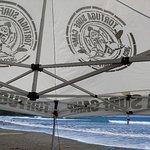 Tortuga Surf School resmi