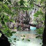 Photo of Phuket Seahorse Tours