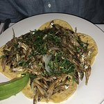 Tacos de charal: salty, good, but you may want to share.