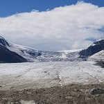 Photo of Columbia Ice Field