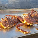 Crabs caught. These three fed 4 people, with heaps leftover. They were massive