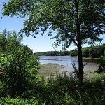 Salmon Falls River