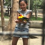 ภาพถ่ายของ สวนสัตว์หัวหิน