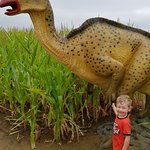 My son loved looking for the dinosaurs!