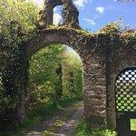 Wonderful views of Shenanigans Ireland