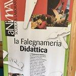 Zdjęcie MAV - Museo dell'Artigianato Valdostano di Tradizione