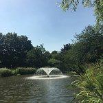 صورة فوتوغرافية لـ Capel Manor Gardens
