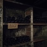 Fotografie: Mas Molla - Traditional Winery