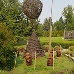 Sculpture from grape vines