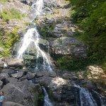 Zdjęcie Todtnau Waterfalls