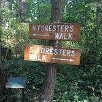 Foto de B.C. Forest Discovery Centre