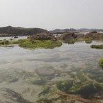 Es una joya natural donde de pueden ver muchas especies entre las rocas y en la arena.