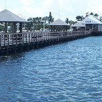 Photo of Anna Maria Oyster Bar on the Pier