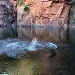 secret waterholes