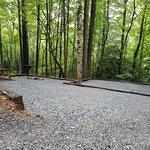Primitive Camping Spots