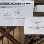 Canopy Walk Opening Times