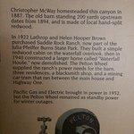 Bild från McWay Falls
