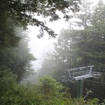 We rode the gondola to the top before the morning fog burned off.