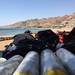 Sinai Divers Backpackers照片