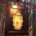 Foto de Bambuddha