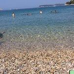 Photo of Lapad Beach