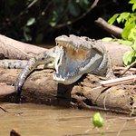 Foto de Best of Costa Rica DMC