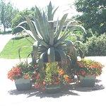 Lauritzen Gardens Omaha's Botanical Center Foto