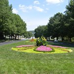 beaitiful floral approach avenue