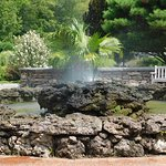 Beautiful fountain, lava rocks, ferns and cooling mist.