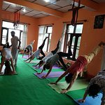 Hatha yoga daily drop in classes with Raj