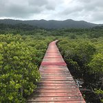 Foto de Salakphet Mangrove Walkway