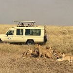 Bilde fra Kitawa Tours and Safaris