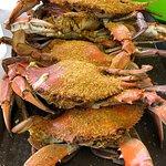 Foto van The Surfing Crab