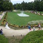 Фотография Birute Park