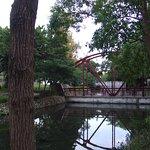 河濱公園照片