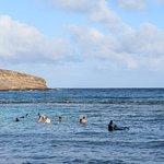 ハナウマ湾自然保護区の写真