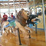 The lion, tapir and poison dart frog on the carousel at Henry Vilas Zoo.
