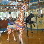 The giraffe, panther and polar bear at the Henry Vilas Zoo in Madison.