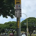 Photo of TheBus - Oahu Transit Services