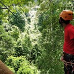Foto de Langkawi Canopy Adventures