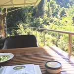 front verandah/deck - Satinash (glass bungalow)