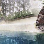 Photo of Wairakei Terraces
