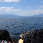 Shiretoko Nature Cruise - Day Tours照片