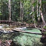 Photo of Emerald Pool (Sa Morakot)