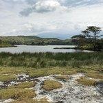 Wayo Africa Image